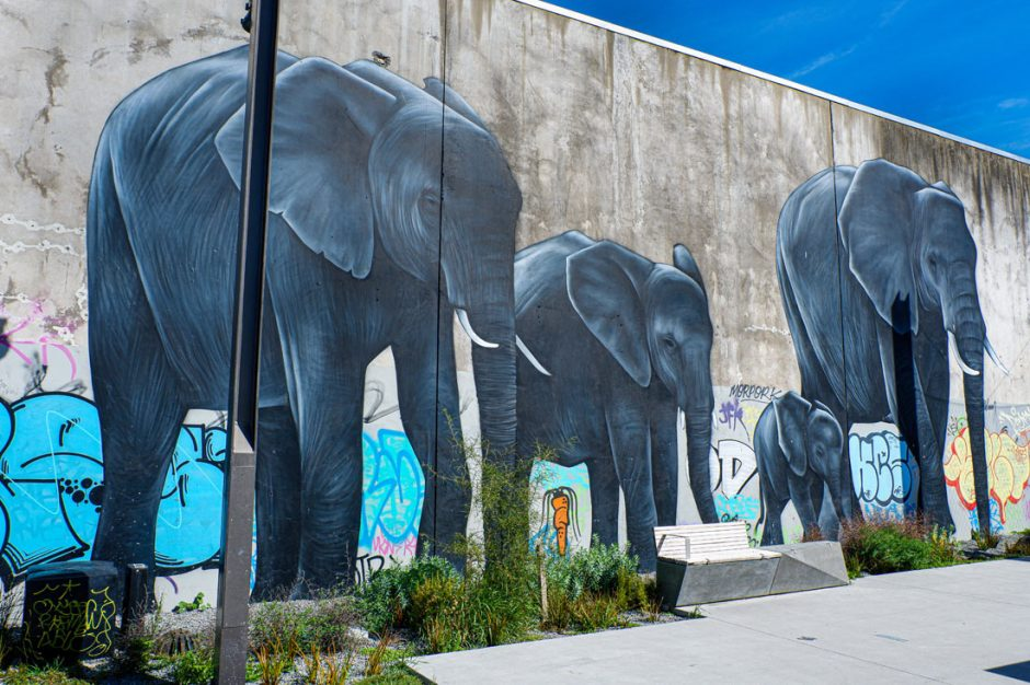 Mural of an elephant family on Manchester Street in Christchurch