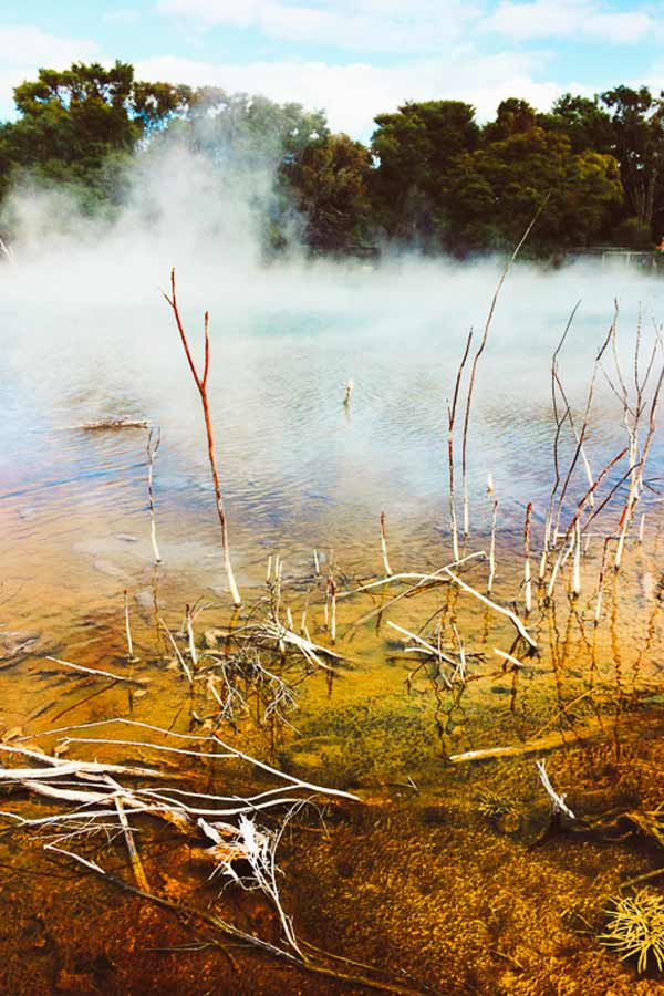 steam coming off the hot pools with yellow deposit in the foreground formed by the sulphur