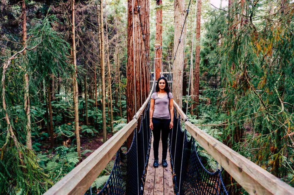 me standing in the middle of the Redwood Forest Treewalk bridge