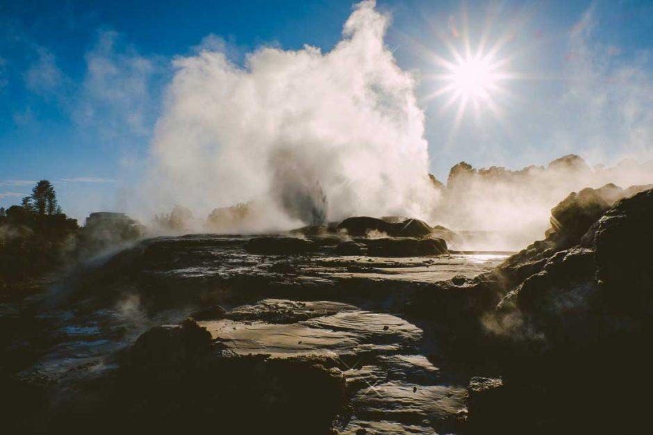 geyser erupting in Te Puia geothermal park in Rotorua