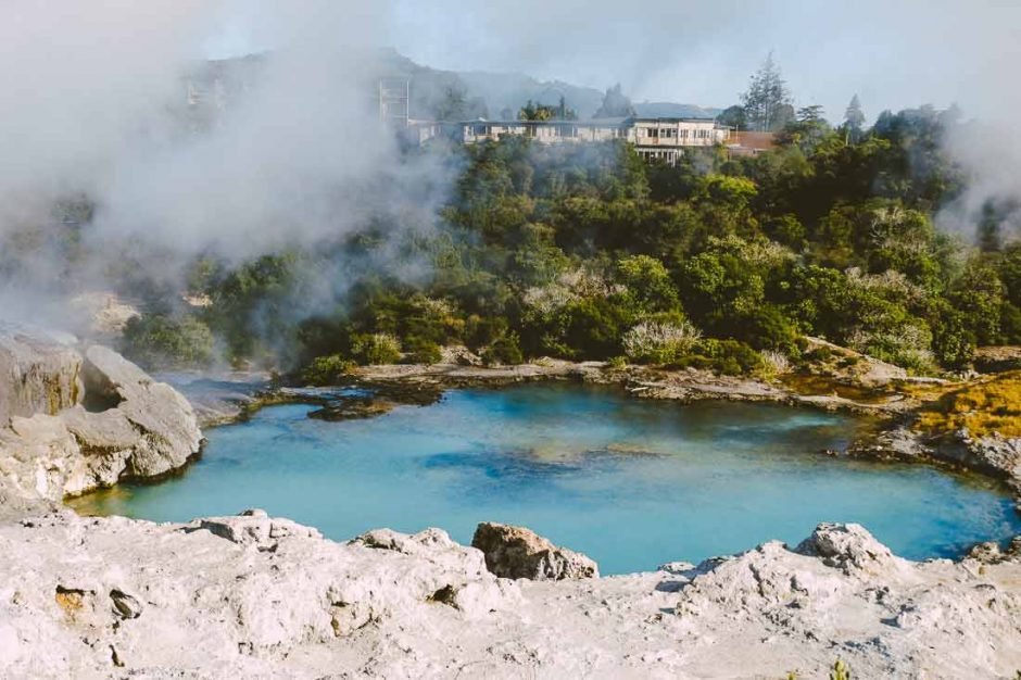 clear blue lake with steam over it from the geyser next to it in Te Puia geothermal park Rotorua