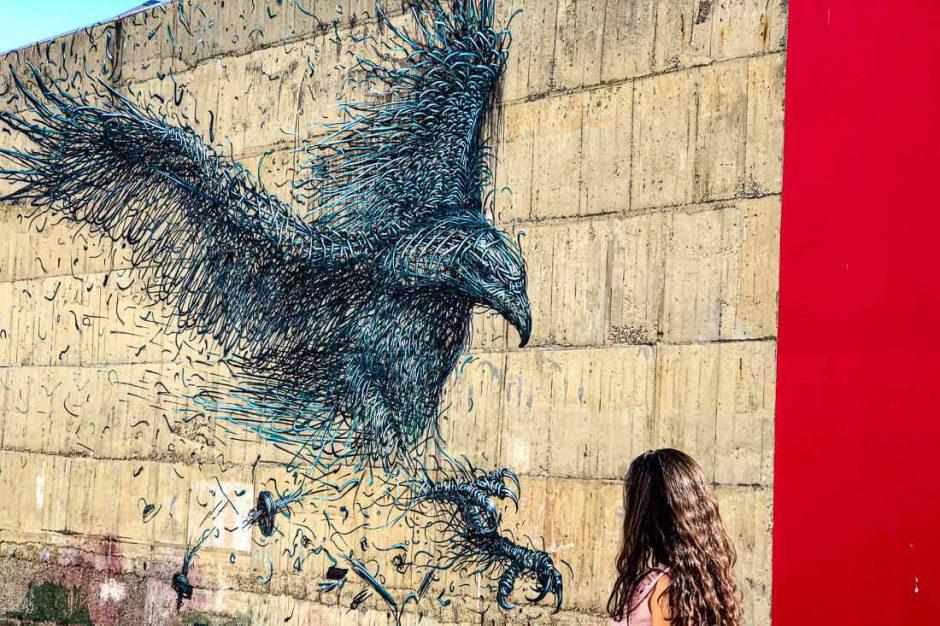 Dunedin street art trail Dal East