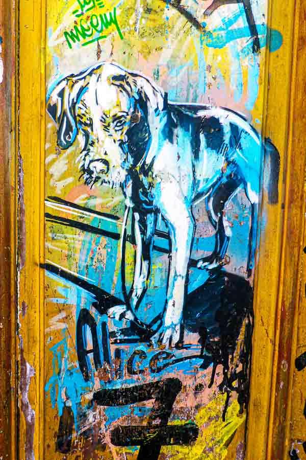 stencil artwork by Alice Pasquini of a dog