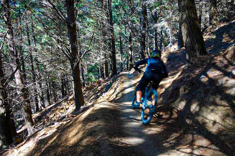bike trail in Christchurch Adventure Park