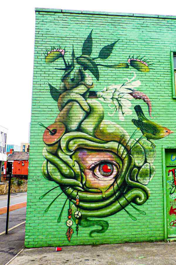 abstract street art in Sheffield of a plant with a human eye at its centre and a bird sitting on the plant