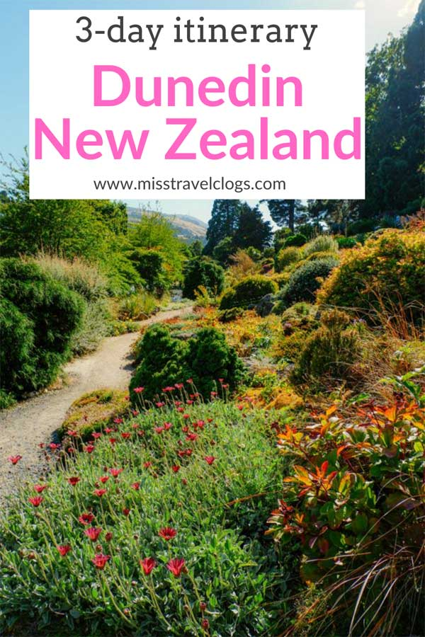 Pinterest image for pinning the 3-day itinerary for Dunedin, New Zealand