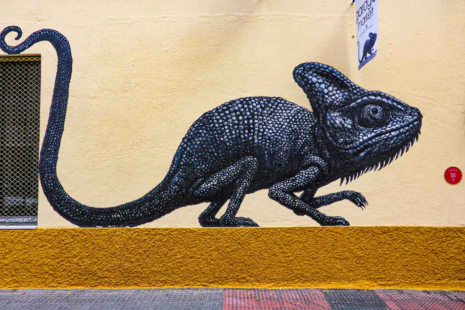 Painting of a chameleon by ROA in Málaga