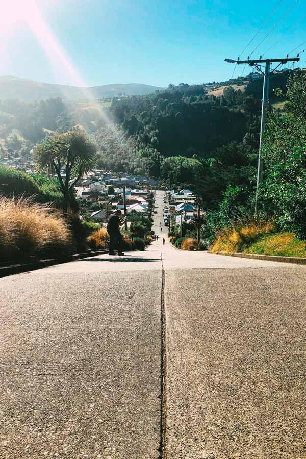 Looking down on Baldwin Street in Dunedin, New Zealand, the world's steepest street