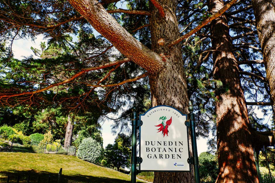 sign for the Dunedin Botanic Garden, New Zealand, surrounded by tall trees