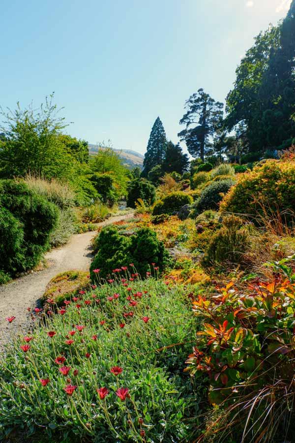 walking path in the Dunedin Botanic Garden, New Zealand