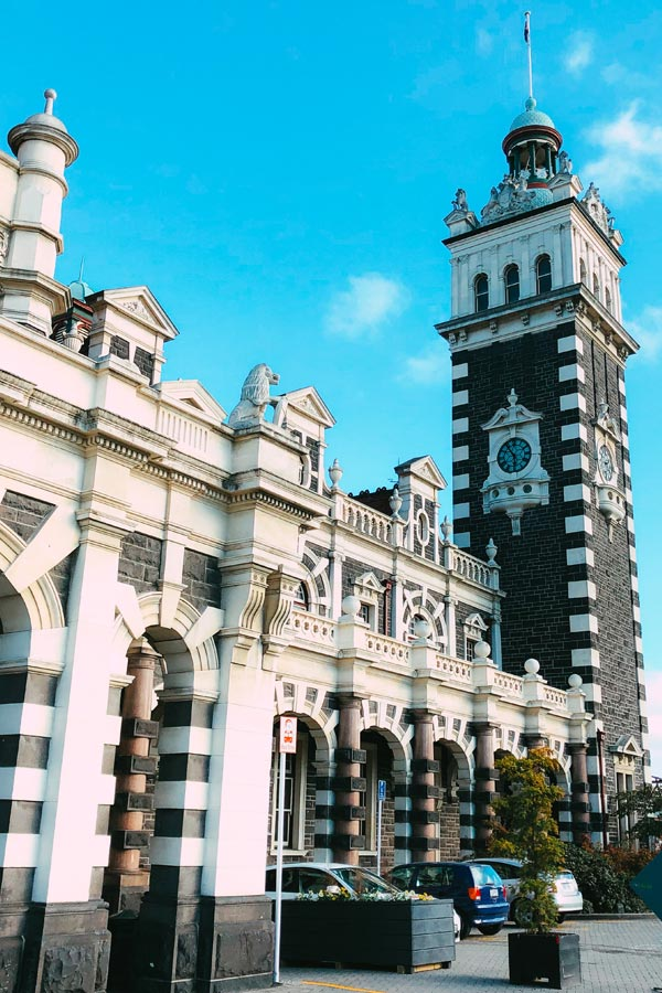 Top Things To Do In Dunedin New Zealand 3 Day Itinerary The service and food has been consistently great. in dunedin new zealand 3 day itinerary