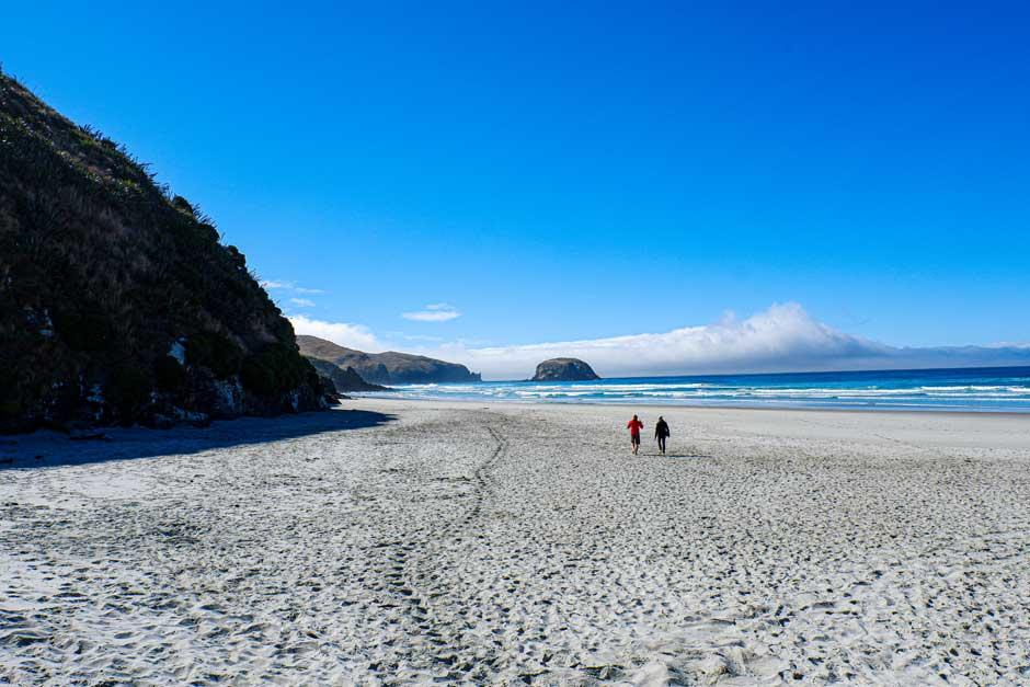 Allens Beach on Otago Peninsula near Dunedin, New Zealand