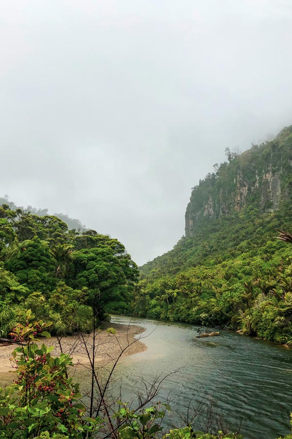 View of the river gorge on the Pororari River Track on the West Coast of New Zealand