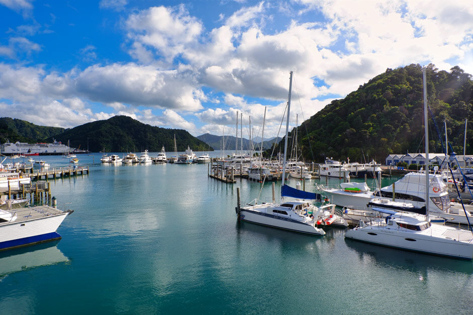 Picton Marina with boats and fiords in the background